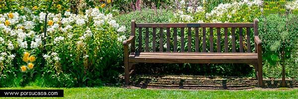 Jardines dise o plantas casas - Plantas de jardin fotos ...